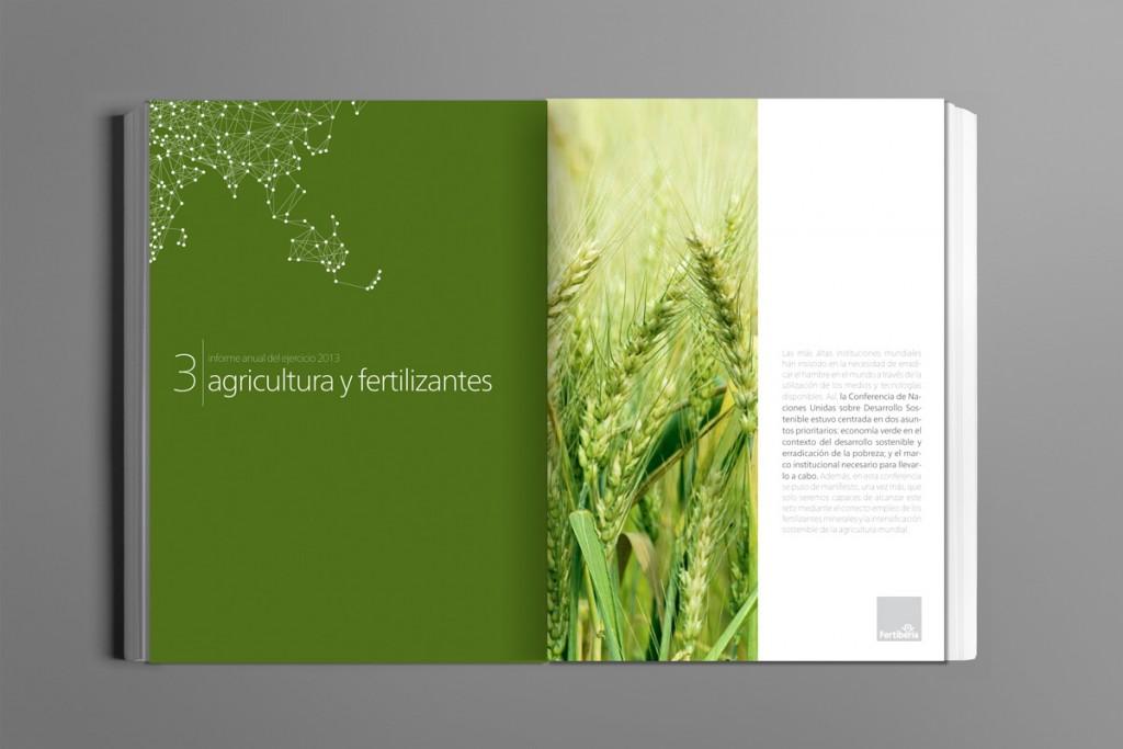 informe_anual_fertiberia_2013_3
